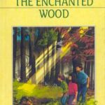 the-enchanted-wood-5
